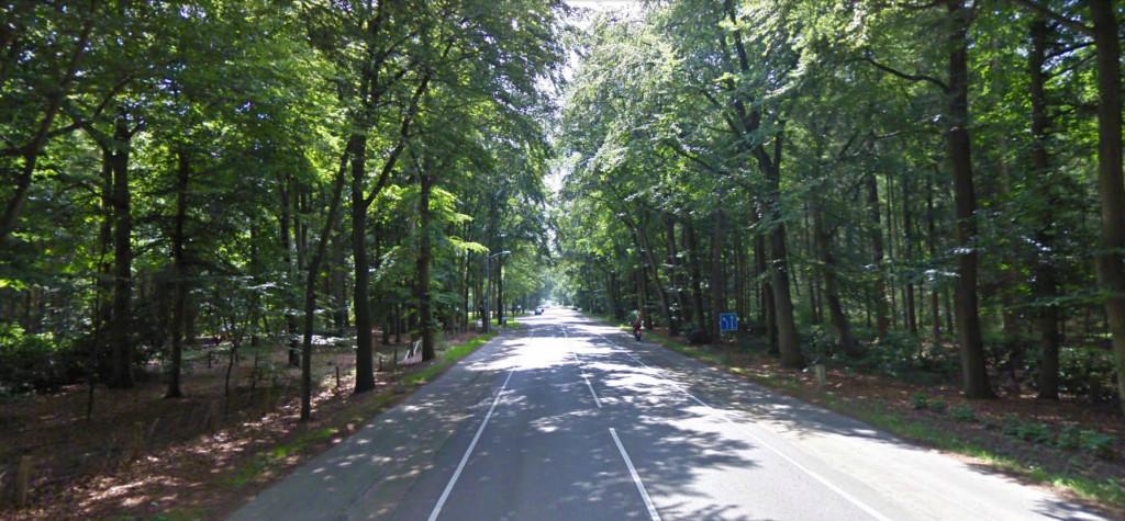 Groteweg thv 104 - Wapenveld richting Hattem - bestaande situatie