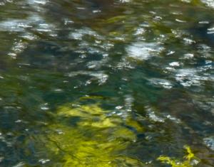 WATERSCHAP-VALLEI-&-VELUWE-EERBEEKSE-BEEK